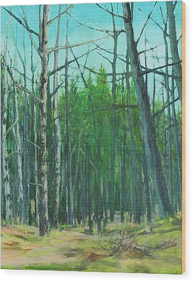 Spring Aspens Wood Print