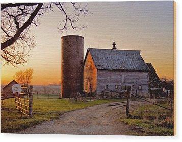 Spring At Birch Barn Wood Print