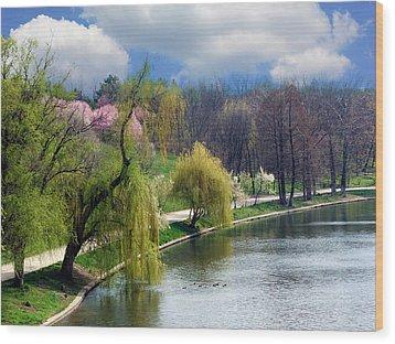 Spring At The Lake Wood Print by Judi Saunders