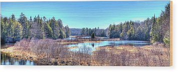 Wood Print featuring the photograph Spring Scene At The Tobie Trail Bridge by David Patterson