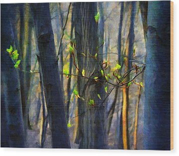Spring Awakening In The Forest Wood Print