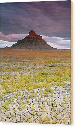 Wood Print featuring the photograph Spring Bloom At Factory Butte. by Johnny Adolphson