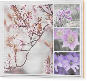 Wood Print featuring the photograph Spring Bloom Collage 1. Shabby Chic Collection by Jenny Rainbow