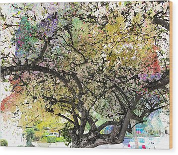 Spring Blooms Wood Print by Leslie Hunziker