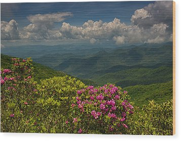 Spring Blooms On The Blue Ridge Parkway Wood Print