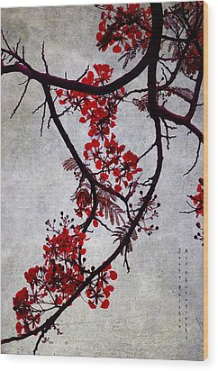 Spring Bloosom In Maldives. Flamboyant Tree II. Japanese Style Wood Print by Jenny Rainbow