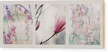 Wood Print featuring the photograph Spring Blossom Triptych by Jessica Jenney