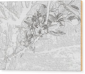 Spring Blossums Wood Print