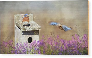 Wood Print featuring the photograph Spring Builders by Lori Deiter