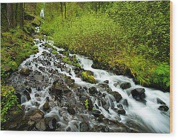 Spring Cascades Wood Print by Mike  Dawson