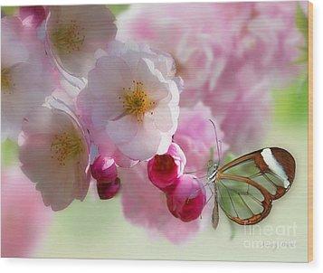Spring Cherry Blossom Wood Print