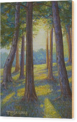 Spring Comes To Indian Point Wood Print by Tanja Ware