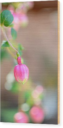 Wood Print featuring the photograph Spring Comes To South Carolina by Corinne Rhode