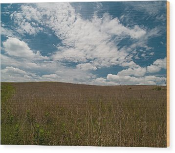 Wood Print featuring the photograph Spring Creek Prairie by Joshua House