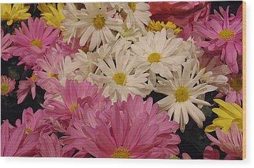 Spring Daisies Wood Print