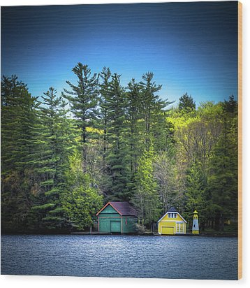 Spring Day At Old Forge Pond Wood Print by David Patterson