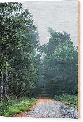Wood Print featuring the photograph Spring Dirt Road by Shelby Young