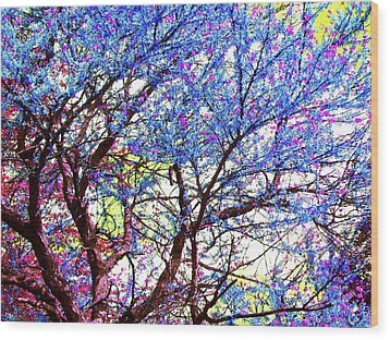 Wood Print featuring the photograph Spring Fantasy by Susan Carella