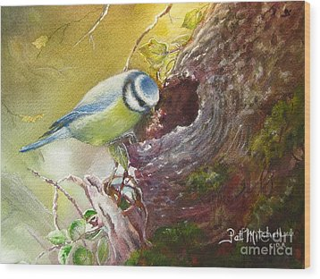 Spring Feeding Wood Print by Patricia Schneider Mitchell