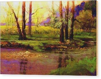 Spring Fields Along Sunlite Creek Wood Print by Joseph Barani