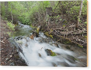 Wood Print featuring the photograph Spring Flow by Fran Riley