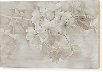 Wood Print featuring the photograph Spring Flower Blossoms Soft Brown by Jennie Marie Schell