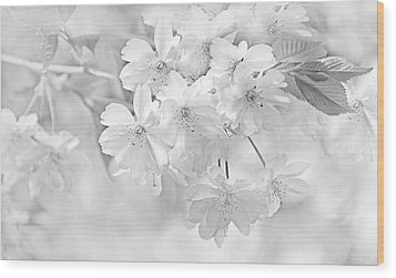 Wood Print featuring the photograph Spring Flower Blossoms Soft Gray by Jennie Marie Schell