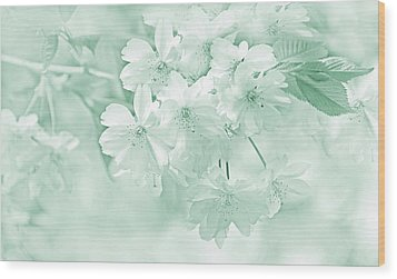 Wood Print featuring the photograph Spring Flower Blossoms Teal by Jennie Marie Schell