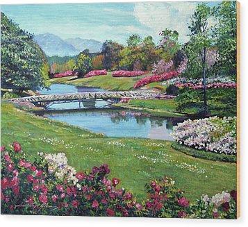 Spring Flower Park Wood Print by David Lloyd Glover
