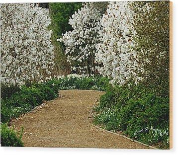 Spring Flowering Trees Wall Art Wood Print