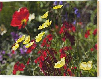 Spring Flowers Wood Print by Garry Gay