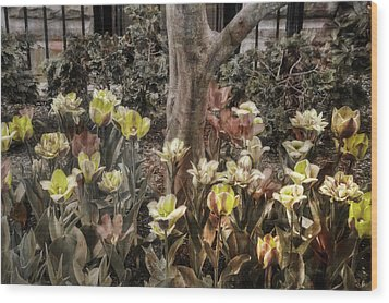 Wood Print featuring the photograph Spring Flowers by Joann Vitali