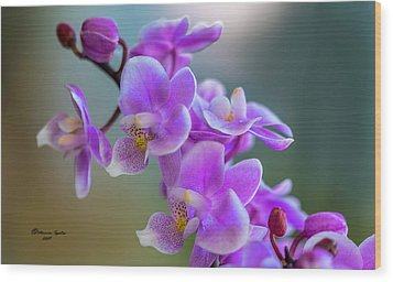 Wood Print featuring the photograph Spring For You by Marvin Spates