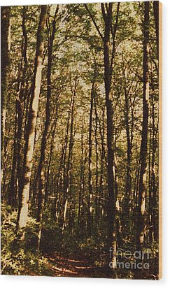 Wood Print featuring the photograph Spring Forest by Jean Bernard Roussilhe