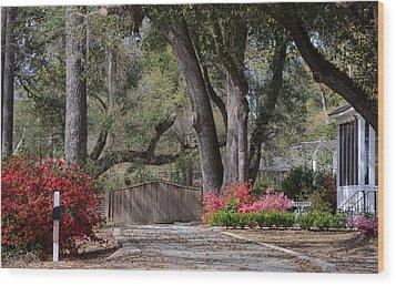 Spring Gate Wood Print