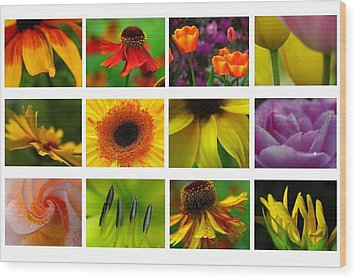 Spring Greetings Wood Print by Juergen Roth