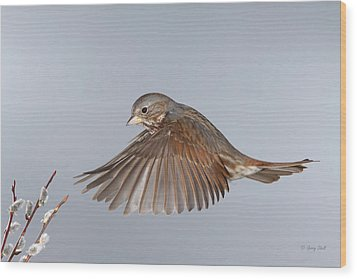 Wood Print featuring the photograph Spring Has Sprung by Gerry Sibell