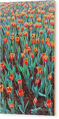Spring In Holland Wood Print