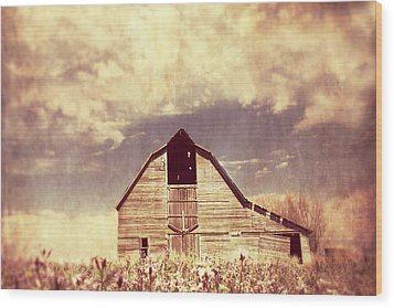 Wood Print featuring the photograph Spring In Kansas  by Julie Hamilton