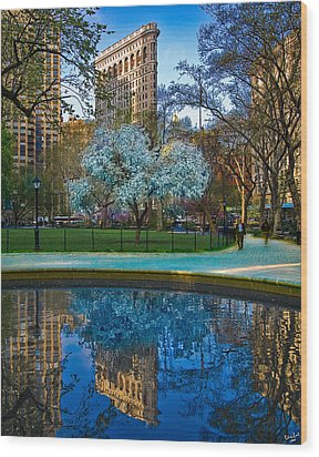 Spring In Madison Square Park Wood Print by Chris Lord