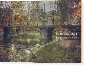Spring In The Boston Public Garden Wood Print by Joann Vitali