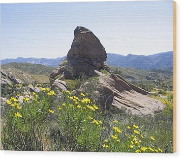 Wood Print featuring the photograph Spring In Vasquez Park by Ivete Basso Photography