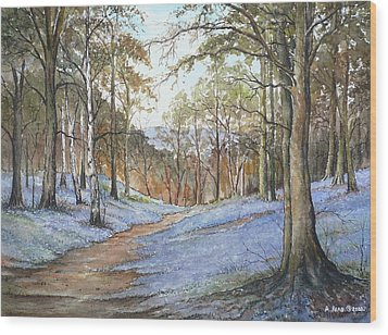 Spring In Wentwood Wood Print by Andrew Read