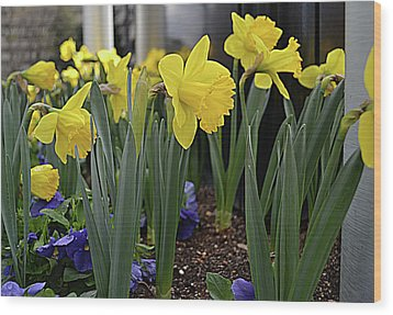 Spring In Yellow Wood Print by Larry Bishop