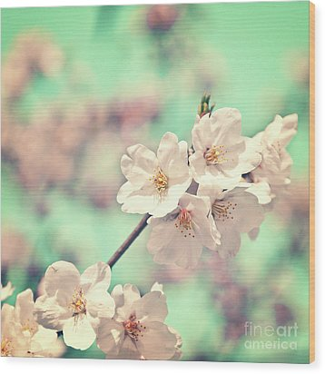 Spring Is Coming Wood Print by Delphimages Photo Creations