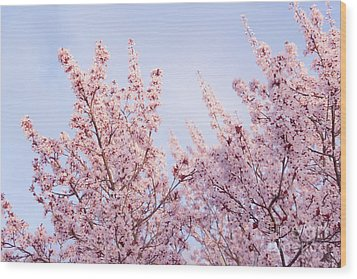Wood Print featuring the photograph Spring Is In The Air by Ana V Ramirez