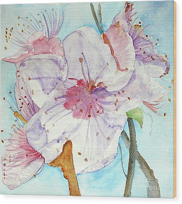 Wood Print featuring the painting Spring by Jasna Dragun