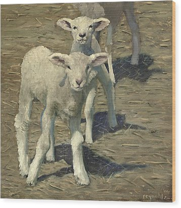 Spring Lambs Brothers Wood Print by John Reynolds