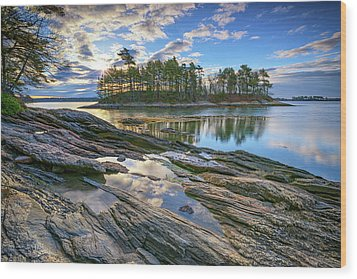 Wood Print featuring the photograph Spring Morning At Wolfe's Neck Woods by Rick Berk