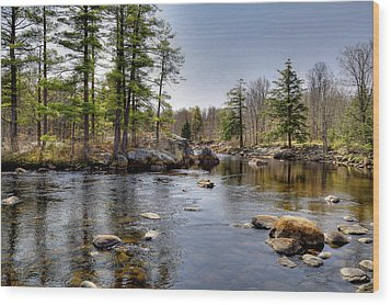 Wood Print featuring the photograph Spring Near Moose River Road by David Patterson